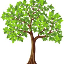 ou, are like an individual leaf on a tree.