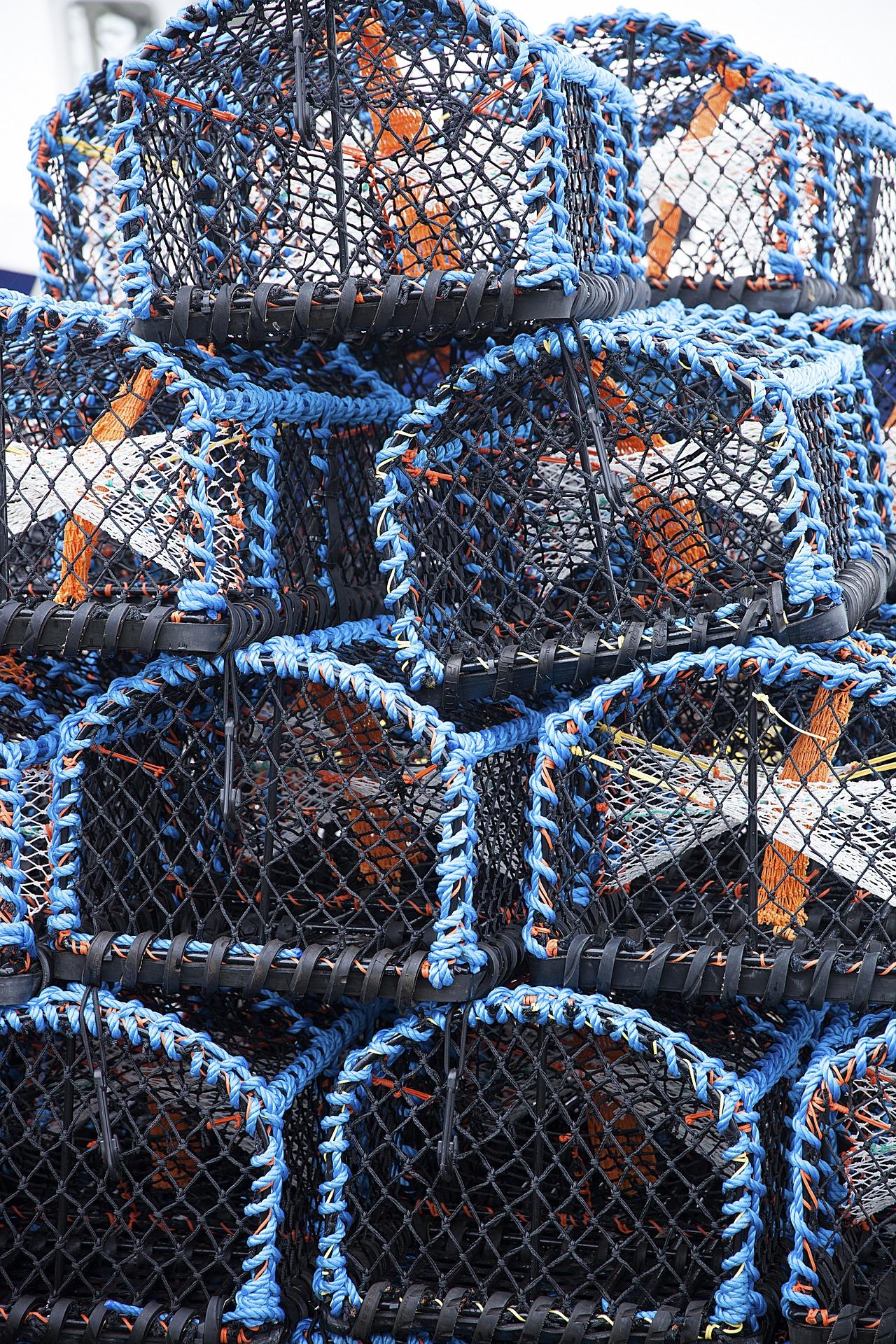 Crab-trap